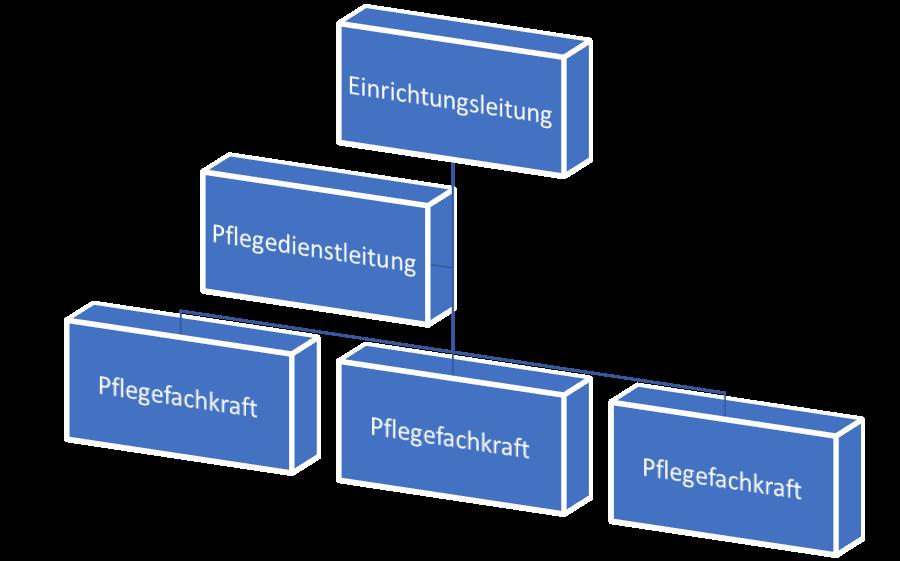 Organisatorische Grundelemente - Verschiedene Arten von Stellen in einer Pflegeeinrichtung