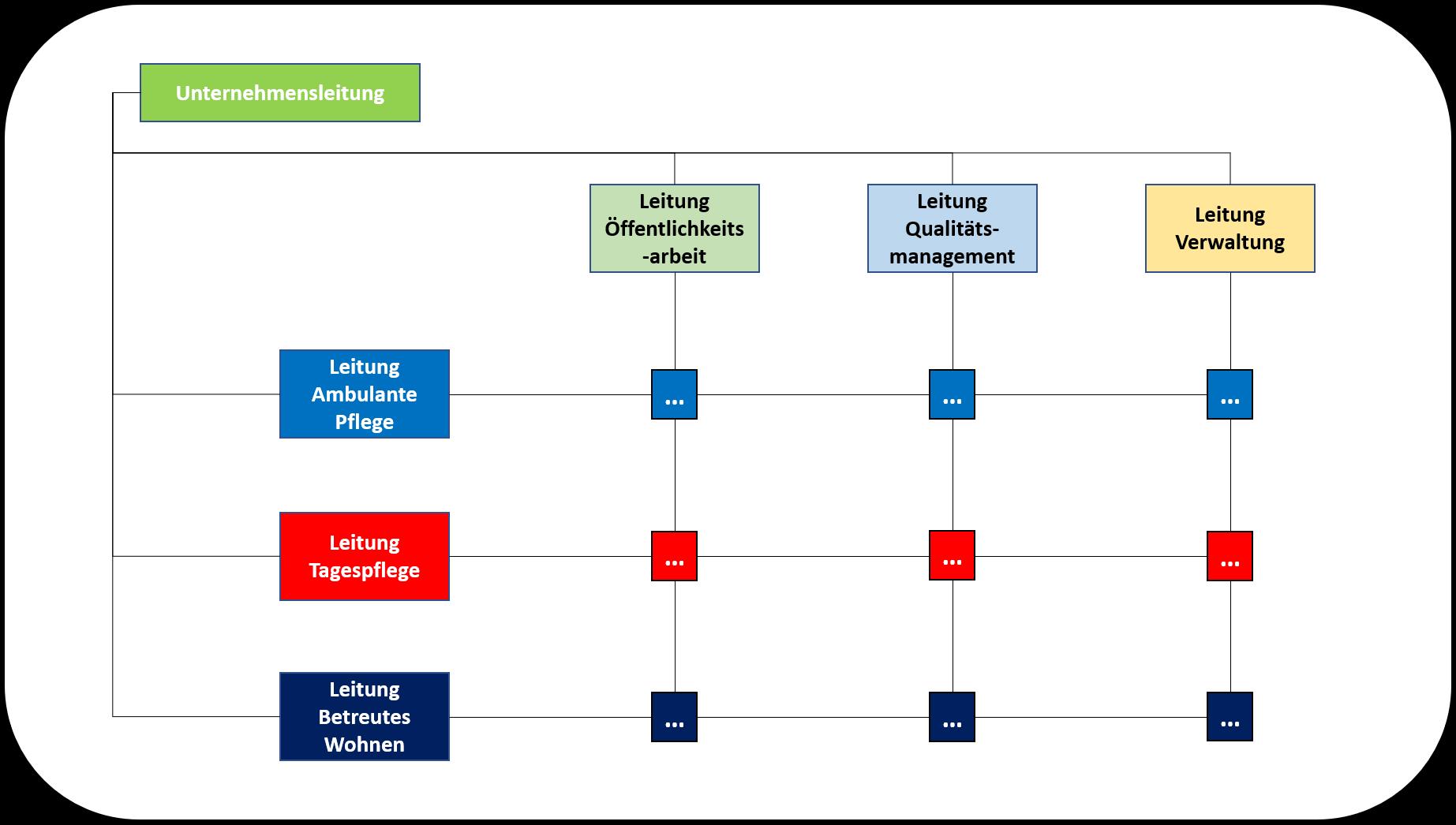 Organisationsmodelle Matrixorganisation: