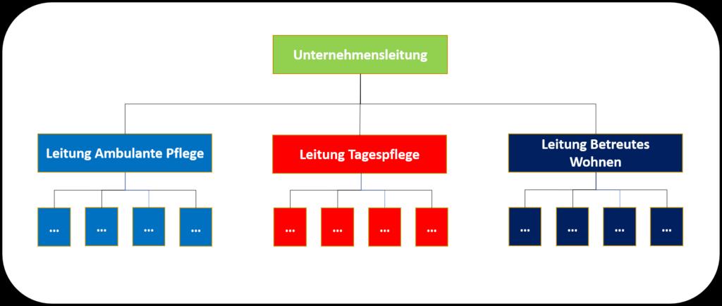 Spartenorganisation als Organisationsmodell